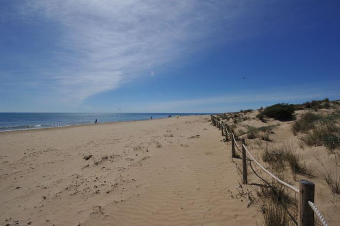 Пляж в торревьехе купить